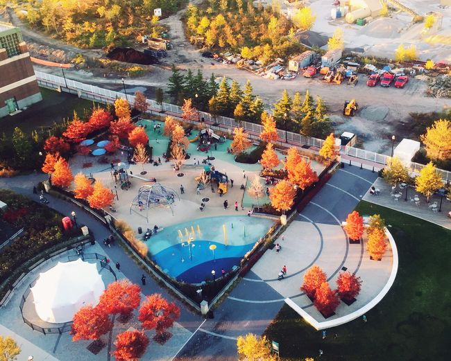 High Angle View Of Park During Autumn