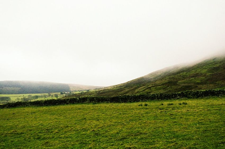 The clouds started to come and get us on the hill. Agriculture Tranquility Landscape Green Color Tranquil Scene Nature Scenics No People Rural Scene Beauty In Nature Sky Grass Outdoors Day Lush - Description Cloud My Year My View Landscapes Mist Foggy Pendle Hill Witches Agriculture Freshness Hills