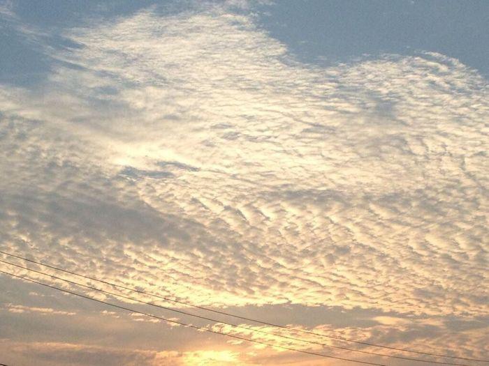 夕焼け 空 ソラ 自然 雲 Nature Sky Clouds