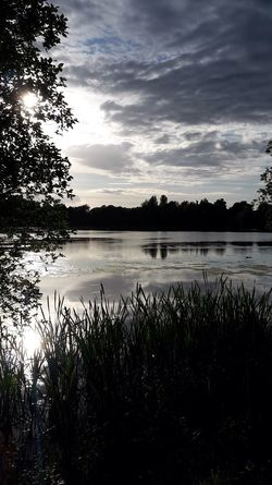 The Great Outdoors - 2017 EyeEm Awards Hillsborough Forest Northern Ireland Lake Water Nature Reflection Tree Beauty In Nature Plant Tranquility Growth Scenics Tranquil Scene Silhouette Outdoors No People Sky Sunset Grass Day
