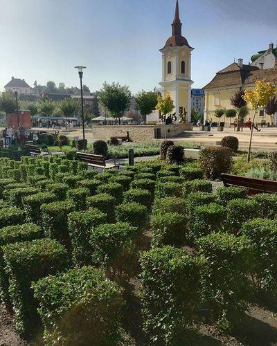Enjoy the silence. . .Mik Ikozosseg IPhone VividHDR Picoftheday Photooftheday Ig_today Ig_europe IGDaily Igers Ig_romania Travel Roadtrip Transylvania Romania