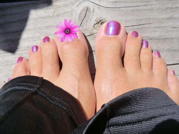 Fingernail Fleurs Nail Polish Orteils Pieds Pink Cookies
