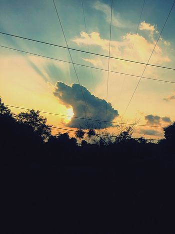 Pacman exists 😉😎😁 Silhouette Sunset Sky Nature Cloud - Sky Mammal Tree One Animal Beauty In Nature Domestic Animals No People Animal Themes Pets Landscape Scenics Outdoors Dog Day