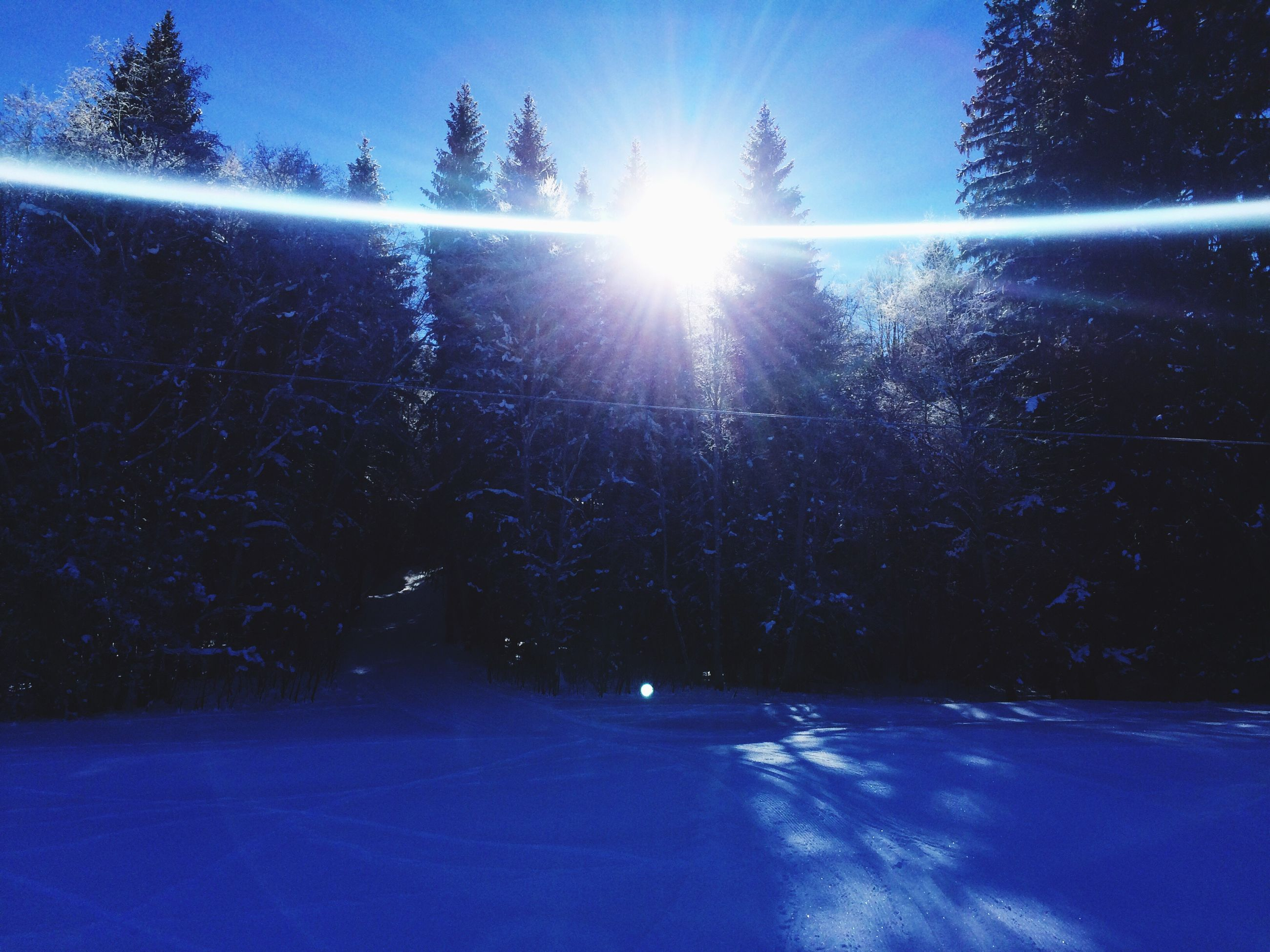 cold temperature, sunbeam, sunlight, sun, winter, outdoors, no people, nature, tree, snow, sky, beauty in nature, water, day