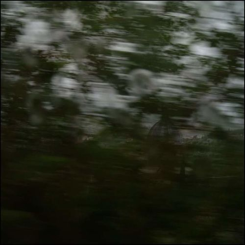 capturing motion Countryside Rural Scene Blurred Motion Motion Blur Motion Nature Fast Speed Travel