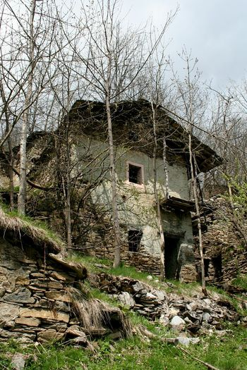 Damaged Sunlight Outdoors Tree No People Abandoned Day Sky Nature Close-up Silence Of Nature Abandoned & Derelict Abandoned Places In The Forest Old House In The Forest Stone Walls From The Past Remember Malincony Nostalgic Place Long Goodbye