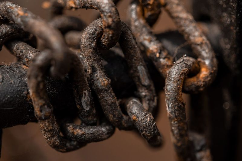 Rusted chain Detailphotography Chain Close-up No People Rusty Metal Day Animal Still Life First Eyeem Photo