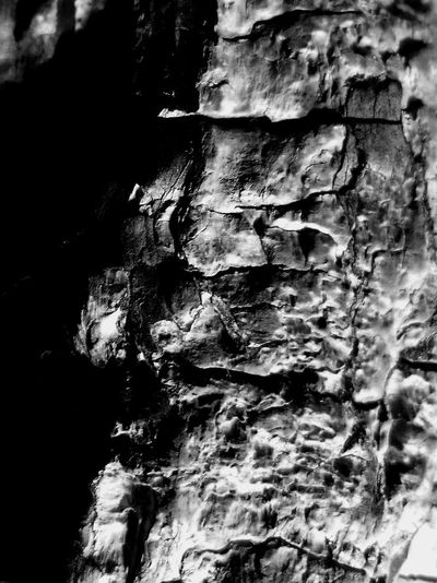 Textured  Pattern Tree Day Natural Pattern Bark Eroded Solid Full Frame Rough Expression Rock Like Face Hidden Green Man Black And White Detail Of Tree Selective Focus Backgrounds Close-up Nature Light Study