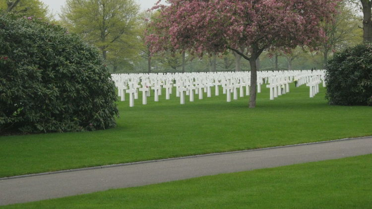 May 5, liberation day, Netherlands, never forget the price of freedom, never let this be necessary...again. Holland Liberationday May 5  War Cemetery War Memorial