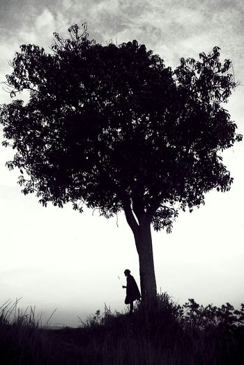 Good night! EyeEm Best ShotsLiveauthentic Vscocam Explore EyeEm Nature Lover Nature Livefolk Silhouette Monochrome Hugging A Tree