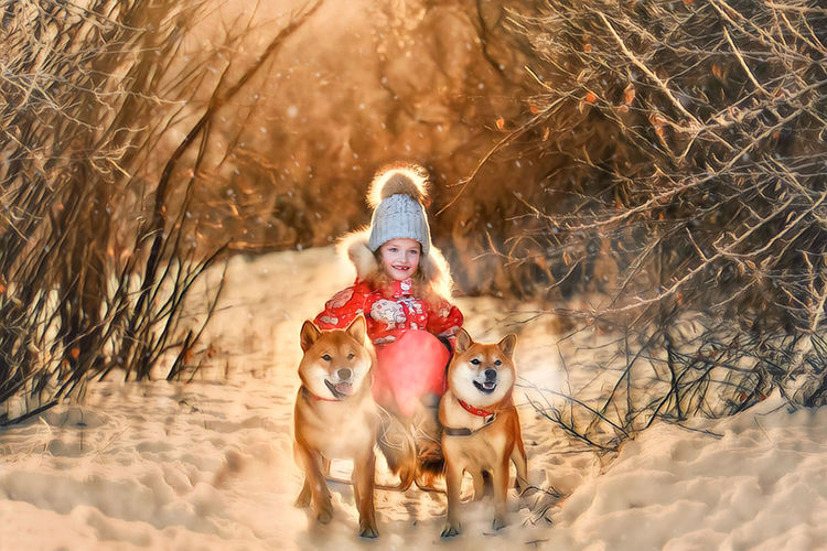 Cute smiling girl sitting on sled by dogs in snow covered forest