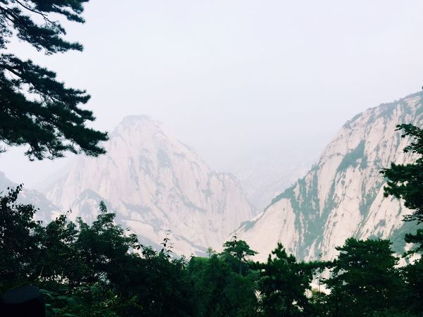 Huashan Mountain Mountain Tree View
