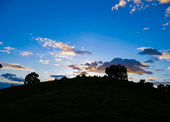 Silhouette of a Masterpiece EyeEm Best Shots Eyemphotography Eyeme New Here Tree Astronomy Tree Area Silhouette Blue Sunset Sky Cloud - Sky Landscape Hill Valley Mountain Ridge Terraced Field Mountain Peak