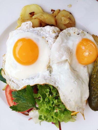 Food Lunch Egg Fried Egg Fried Potatoes Salad