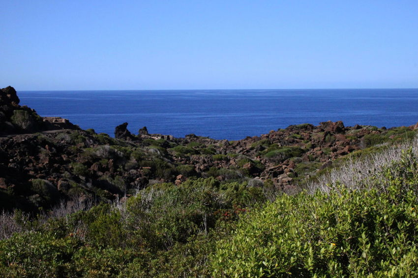 Grass Pantelleria Beauty In Nature Blue Bushes Clear Sky Day Horizon Over Water Landscape Nature No People October 2015 Outdoors Scenics Sea Tranquil Scene Water
