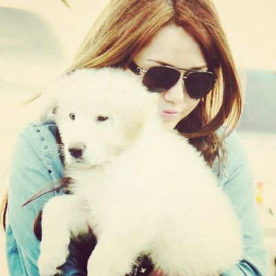 @mileycyrus @matecyrus @linilove0o Smiler Smilers Milesbian Mileyisnotugly mileycyrus NohateforMiley matecyrus