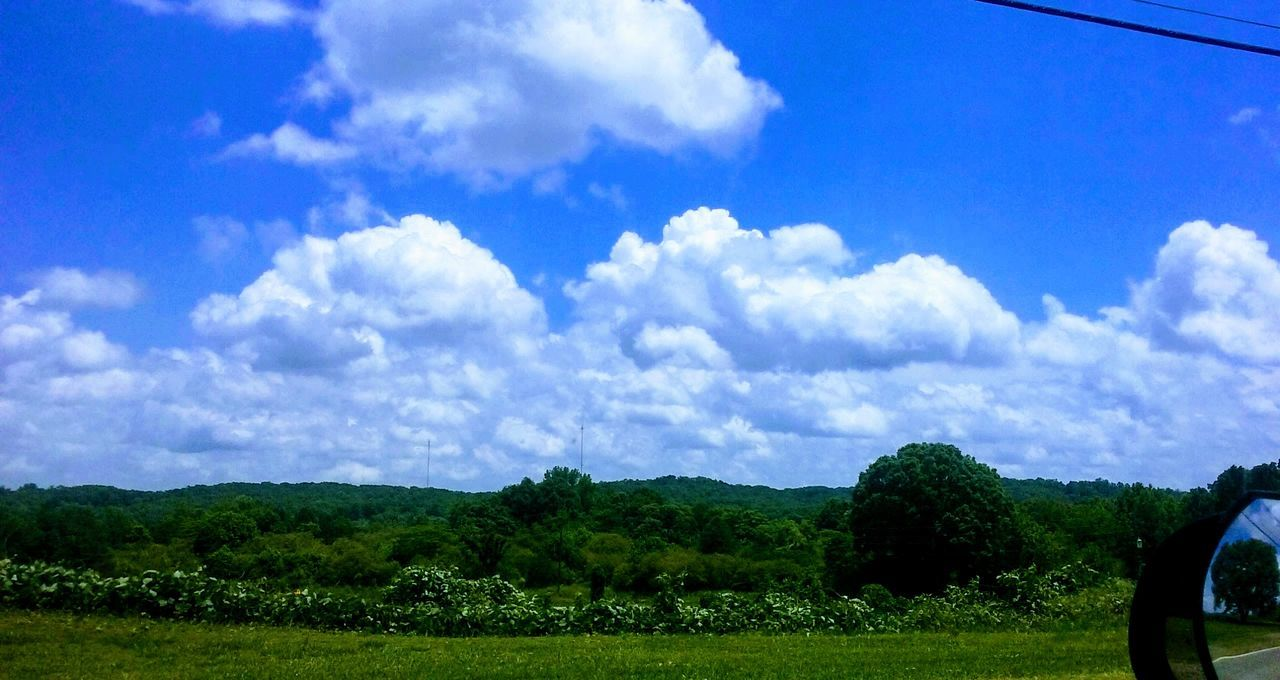 tree, beauty in nature, nature, cloud - sky, sky, tranquility, scenics, landscape, tranquil scene, growth, day, field, grass, green color, outdoors, no people