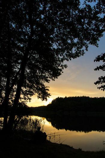 Fisherman Fishing Idyllic Lake Landscape Reflection Scenics Silhouette Sunset Tranquil Scene Tranquility Tree Water