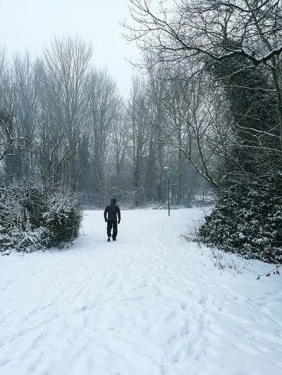 Single Man Snow
