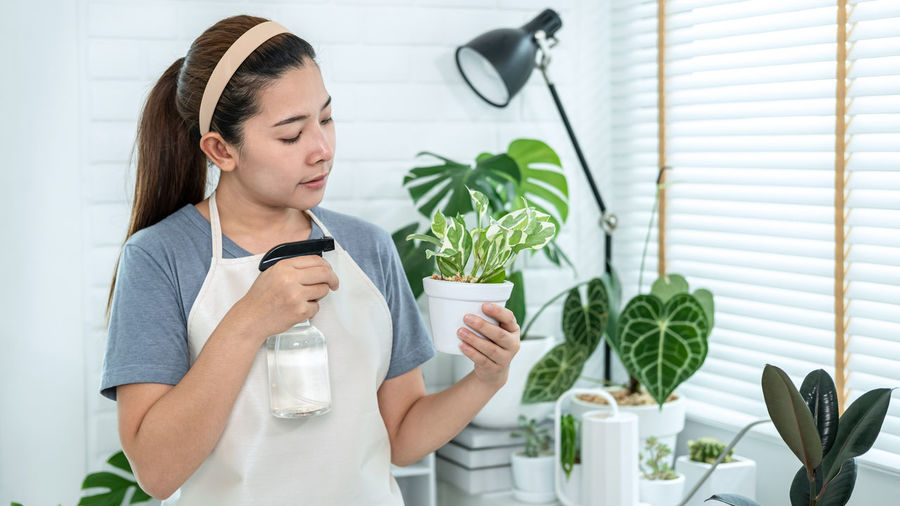 Young woman looking at potted plant