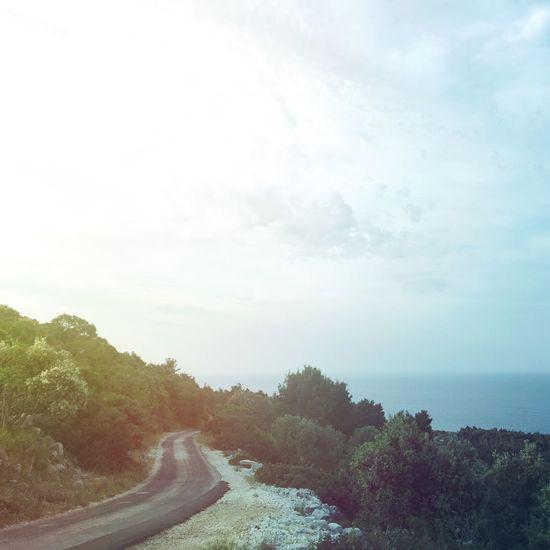 Roads, roads... Landscape Nature Dawn Sunrise Sea Seaside Adriatic Sea Road Trees Veli Lošinj
