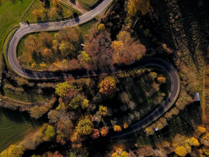 Aerial view of road amidst autumn trees during sunset