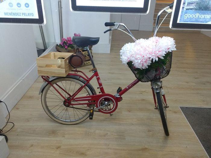 lindo! Bike Riding Art Artbike LindoLindo Show