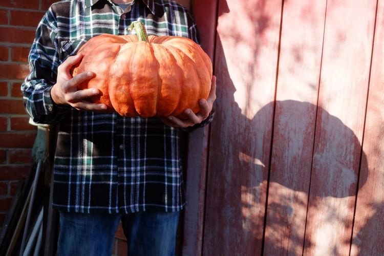 View of man holding pumpkin