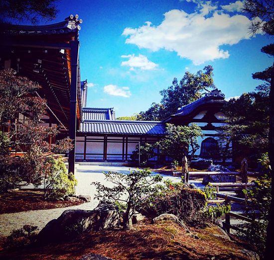 金閣寺 鹿苑寺 方丈 庭園 寺社仏閣 京都 Kyoto Relaxing