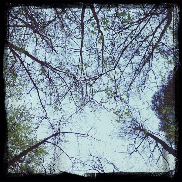 hugging a tree Relaxing Taking Photos Have A Nice Day♥ Wow!!!! The Sky Is Very Beautiful :-) :-) :-) :-)