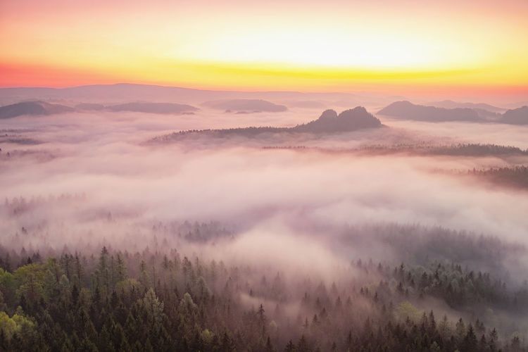 Misty morning. colorful spring sunrise in germany saxony europe. artistic style post processed photo
