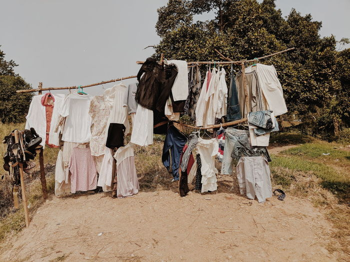 Clothes drying against trees