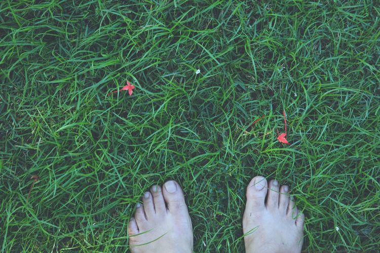 Close-up low section of bare feet on grass