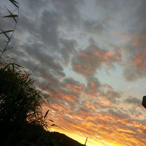 The sky is coming down. #colores #ciello #duck Duck Colores Ciello