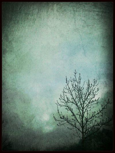 ...caldas De Luna