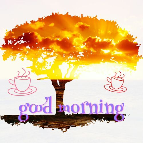 Tree Sunbeam Wishes Good Morning Tea Time Creative Photography This Is My Art!!! ♡!!! No People Scenics Day