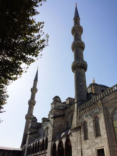 Blue Mosque Istanbul Istanbul Turkey Turkey Building Exterior Architecture Religion Clear Sky Mosque Outdoors Me Around The World Traveling Building Eye4photography