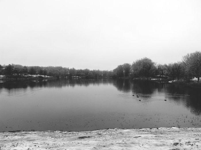 Classic Winter. DroidEdit Winterscapes NEM Landscapes Landscape