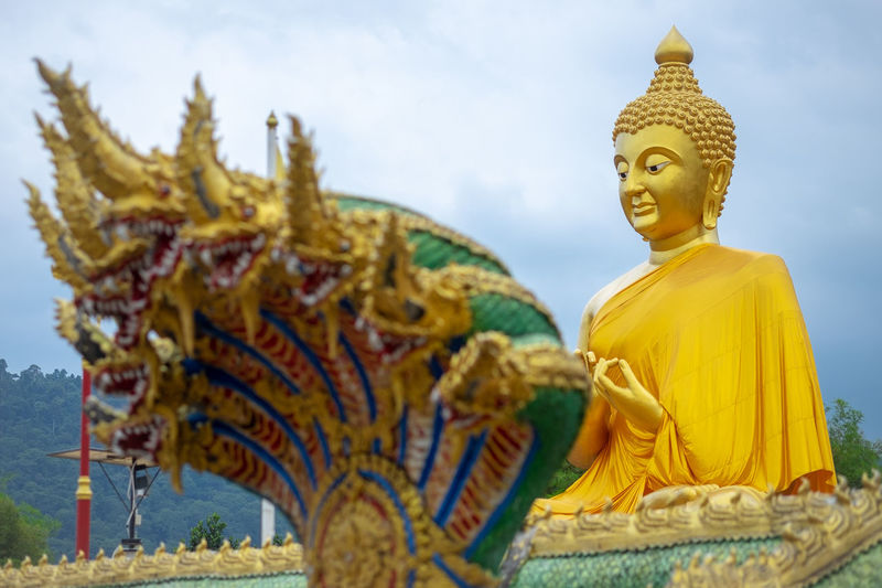 Buddha Snake Art And Craft Belief Craft Creativity Gold Gold Colored Human Representation Idol Low Angle View Male Likeness Monk  No People Place Of Worship Priest Religion Representation Sculpture Serpent Sky Spirituality Statue Yellow Yellow Color First Eyeem Photo