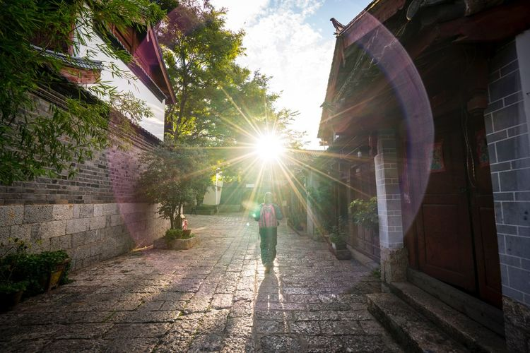 Tourist walking alone at Lijiang Ancient City street with amazing sun flare Tourism Tourist Lens Flare Building Exterior Built Structure Architecture One Person Outdoors Rear View City People Full Length Adult Sky Real People Lifestyles Day Sunlight Walking Tree Sun
