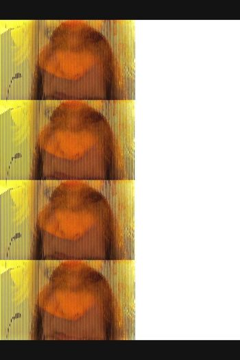 Studies Of Glitches