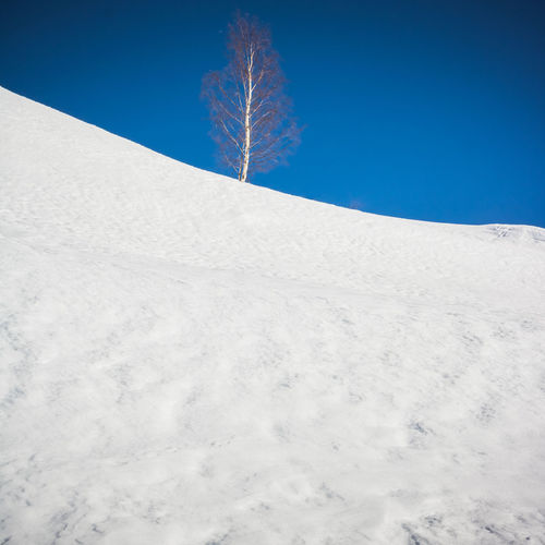 Alps French Alps Alpes AlpesFrancaises Mountain Snow ❄ Snowcapped Mountain Nature Day Outdoors Snow Snow Covered Altitude Frozen Cold Temperature White Background Winter Scenics - Nature Land Blue Sky Tranquil Scene Tranquility Beauty In Nature White Color Landscape No People Environment Clear Sky Tree Non-urban Scene Climate