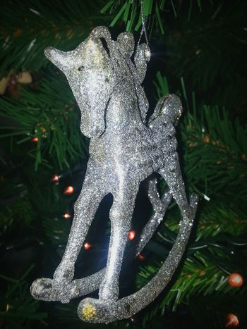 Christmastime Christmas Spirit MerryChristmas AriaNatalizia Italy Holiday Moladibari Allshots_ Enjoying Life Allcolors Winter Bestoftheday Photooftheday Macro