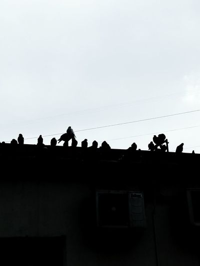 Silhouette people on building terrace against clear sky