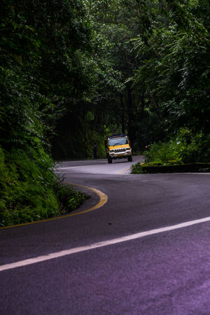 Beauty In Nature Country Road Countryside Deserted Deserted Road Empty Road Forest Forest Road Hairpin Turns India Lush Foliage Mountain Road Non-urban Scene Outdoors Road Road Marking Road Trip Roads Roads In The Forest Roadscenes Transportation Wayanad Western Ghats