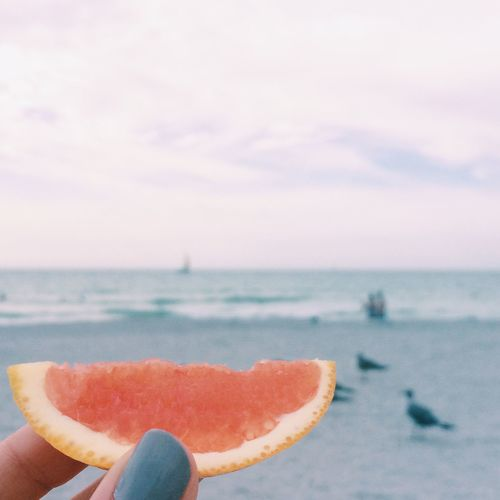It's Cold Outside Beach Orange Grapefruit Food In The Air