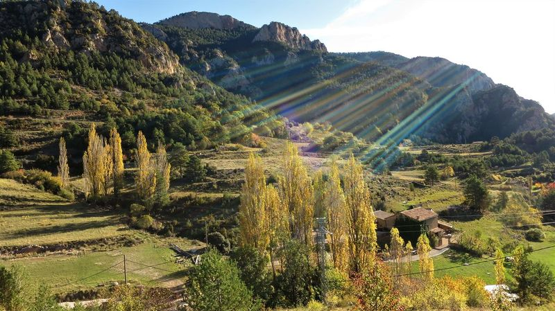 Mountain views in Catalonia Autumn Colors Autumn Leaves Catalonia Catalunya Green Sunlight Sunrays Yellow Leaves Autumn🍁🍁🍁 Beauty In Nature Catalunyaexperience Landscape Mountain Mountain Range Nature No People Orange Leaves Outdoors Plant Port Del Compte Scenics Sky Tranquil Scene Tranquility Tree