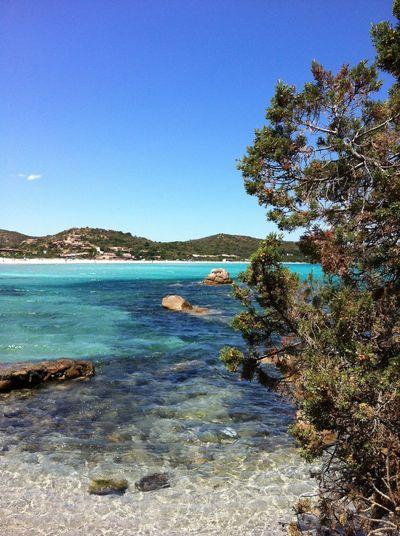 San Teodoro - Porto Taverna Portotaverna Cerdeña Tavolaraisland Island Sardegnaofficial Sardegna Santeodoro Sardinia Water Sky Clear Sky Beauty In Nature Scenics - Nature Tranquility Land Blue Sea Beach