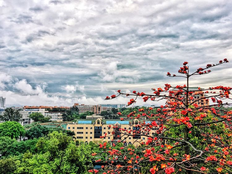 Cloudy Cloud_collection  Campus Life Mountain City Hit The Paradise Rainy Day Gotcha