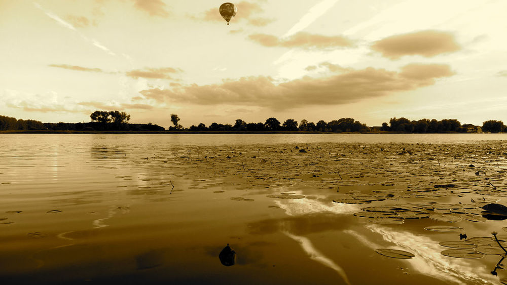 Heißluftballon Beach Beauty In Nature Cloud - Sky Day Nature No People Outdoors Palm Tree Reflection Sand Scenics Sea See Sepia Sky Sunset Tranquil Scene Tranquility Tree Water